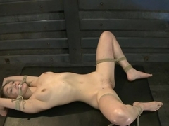 Training Lilly LaBeauDay 1-Evaluating the Slave