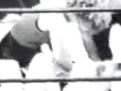 Retro Porn Archive Video: Rpa s0278