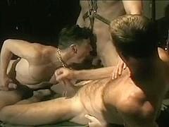 Vintage homosexual porn