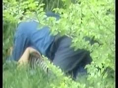 hidden webcam - sex in park - csm