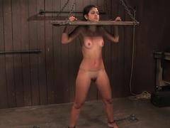 LeahThe Zipper