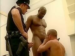The police uniform suit