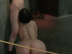 Calico and Cherry Torn's Live Feed