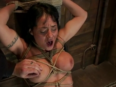 Hot sexy Hawaiian is bound to a pole, lifted to her tip toes with a brutal crotch rope. Made to cu.