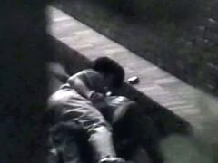 Asian couples caught having sex in public