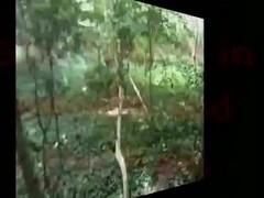 Slut Caught in Woods