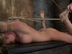 Category 5Modified Hogtied Suspension