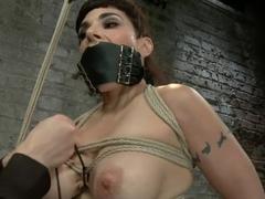 Annika Returns to HogTied