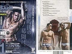 Disc BAdi 2011-01
